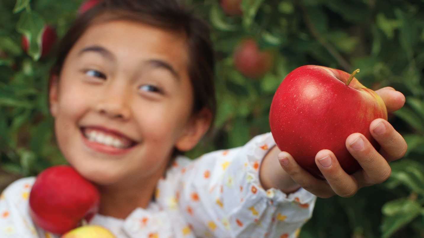 A smiling child holds out fresh-picked apples.