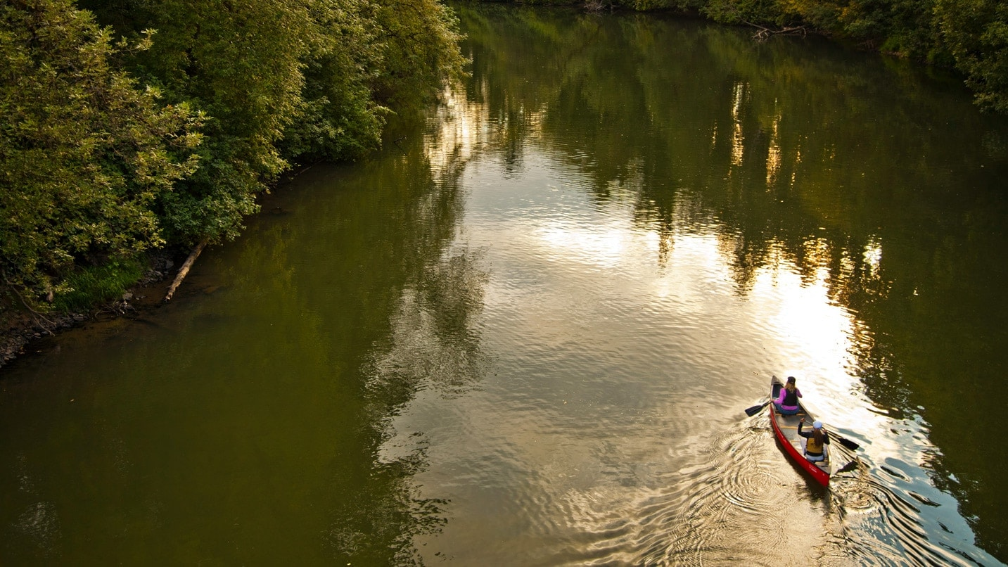 A bird's-eye view of two paddlers in a canoe on the Tualatin River.