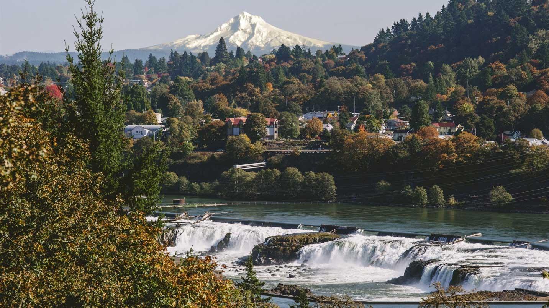 A snowcapped Mt. Hood looms over Oregon City and its impressive Willamette Falls.