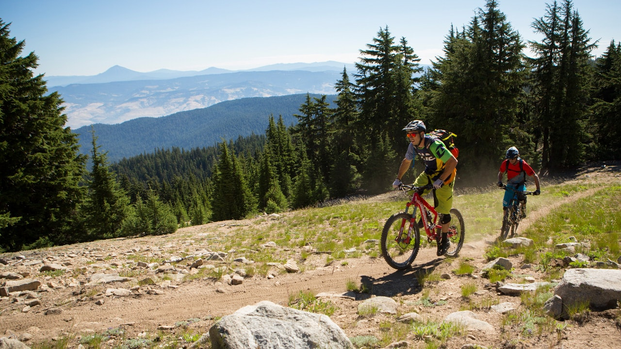 Two mountain bikers pedal down a dirt trail that overlooks a forested valley.