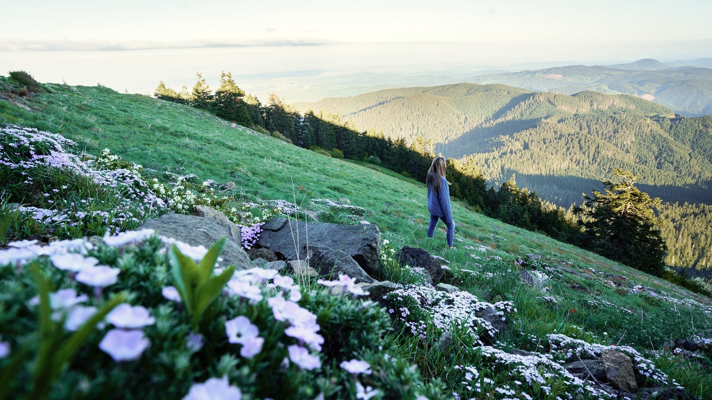 A hiker looks out to the valley from a wildflower-covered meadow at Marys Peak.