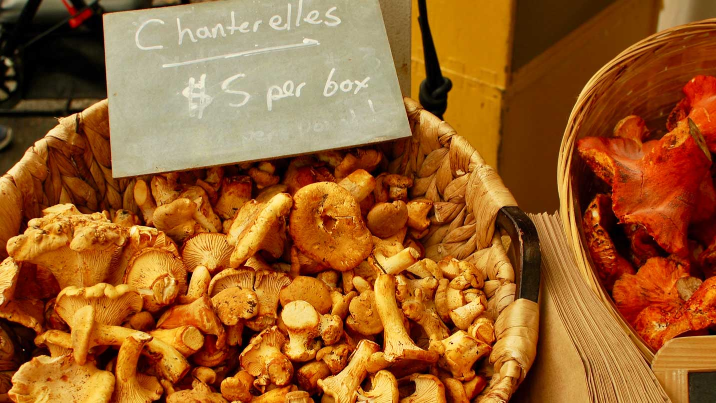A sign indicates that chaterelle mushrooms are sold for $5 per box.