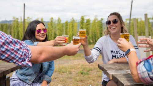 Four friends cheers their beers in front of a hop field.