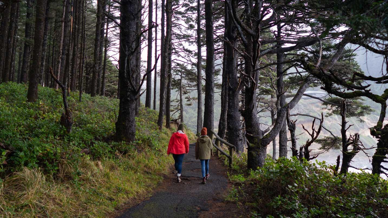 Dos personas caminan en un bosque.