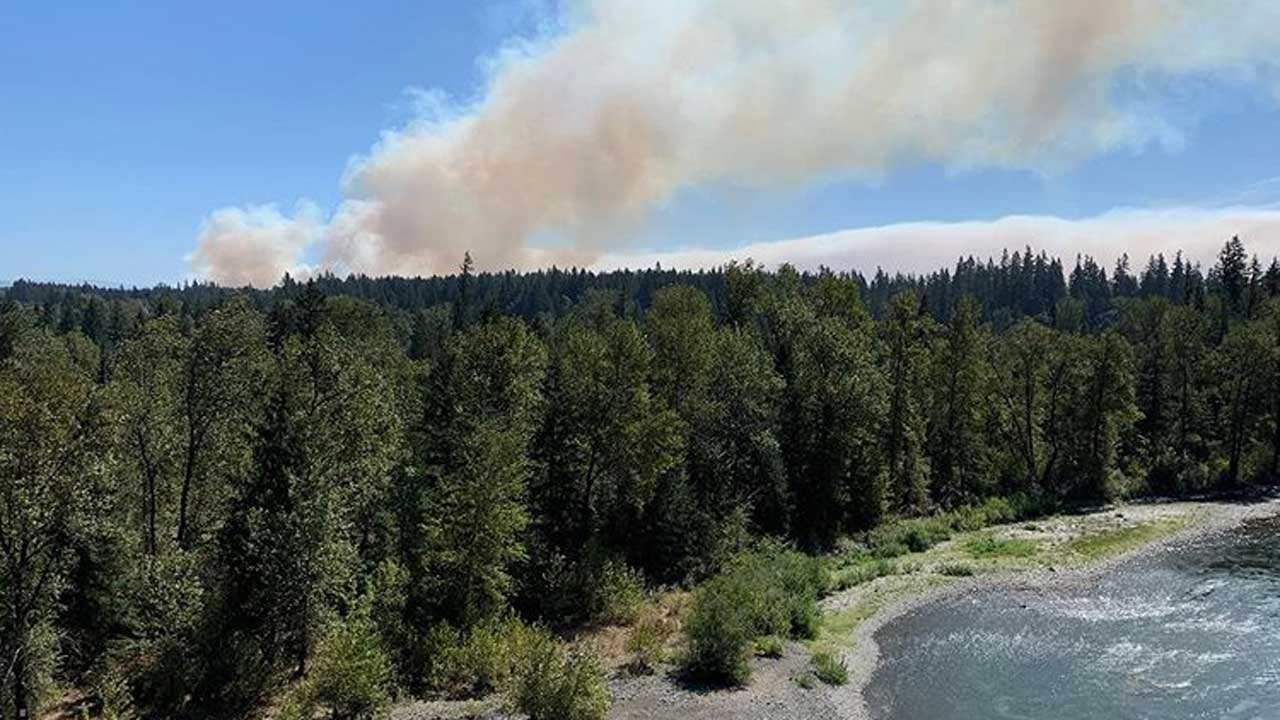 Smoke from the Riverside Fire appears above the trees in the Mt. Hood National Forest.