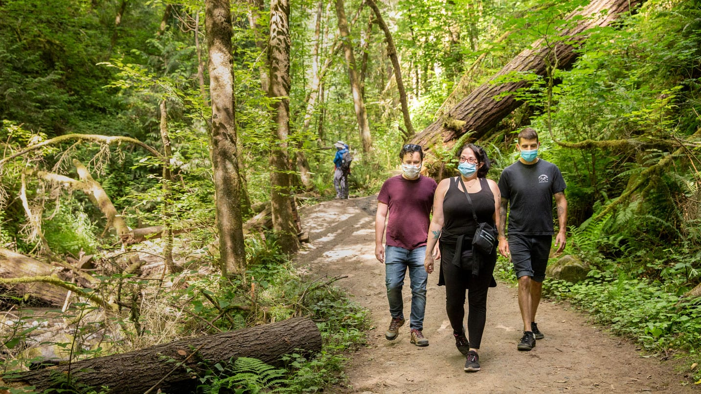 Three people wearing face coverings walk down a nature trail.