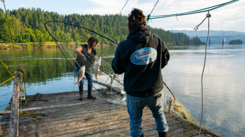 Brigham Fish Market owners Kim Brigham-Campbell and Terrie Brigham fish in the traditional way — atop wooden scaffolds in the river, using nets or spears to gather fish. (Photo by Uncage the Soul Productions)