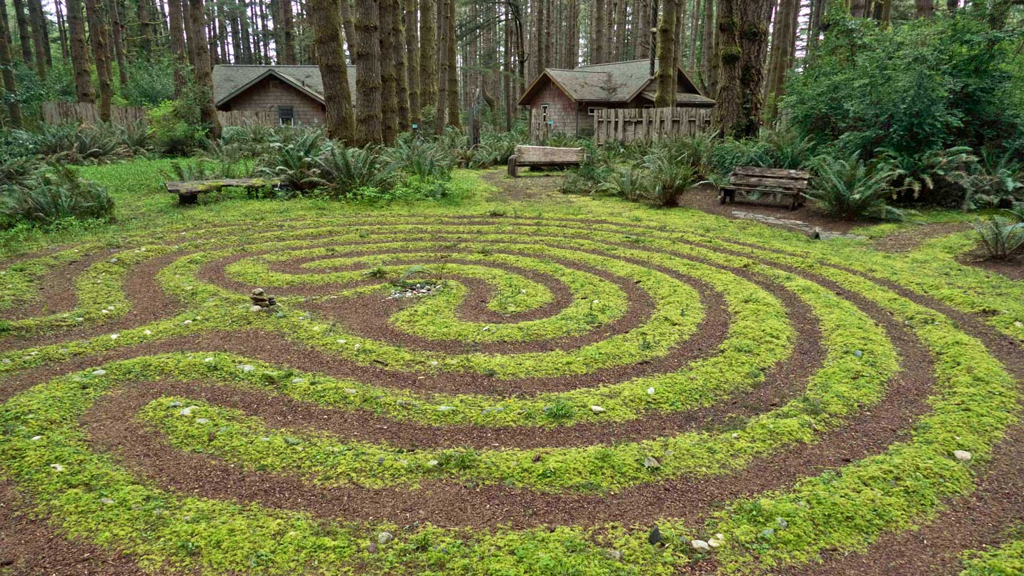 Moss swirls into a maze-like circle in front of woodsy cabins.