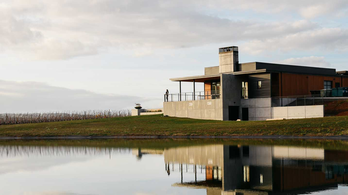 A person looks out from the tasting room at winter grapevines and a pond.