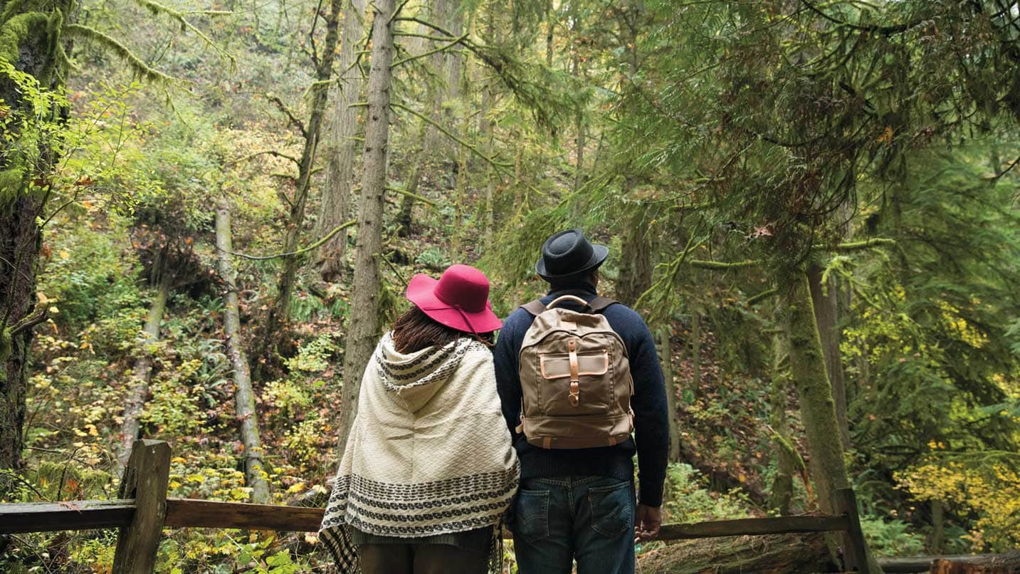 A couple look up at the trees in Portland's lush Forest Park.