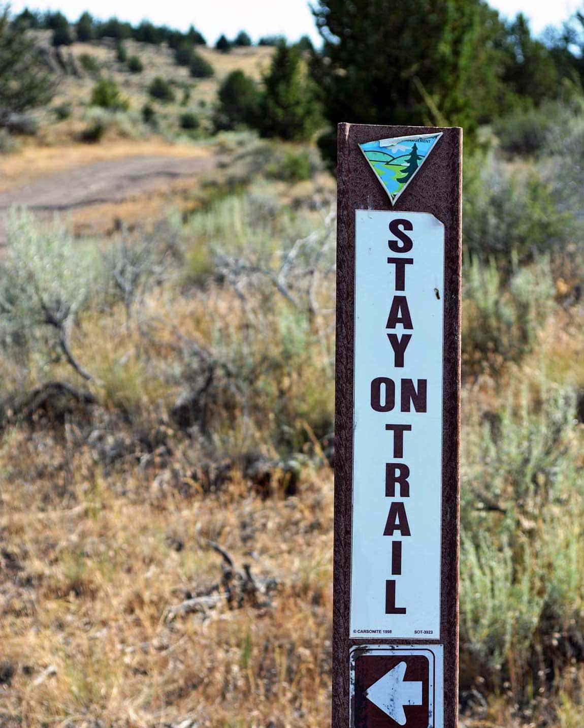"""A sign reads """"Stay on the Trail"""" with a BLM logo."""