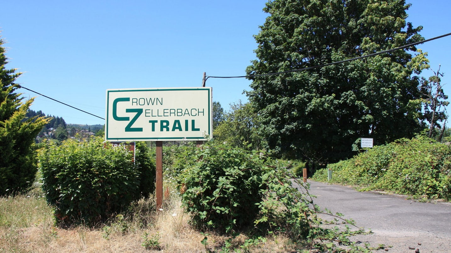 A sign reads CZ Trail in green text next to the trail.