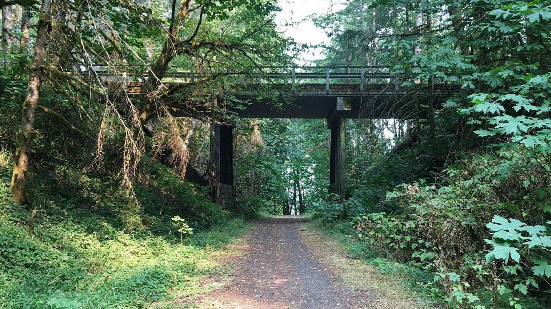 A dirt path goes under a bridge.