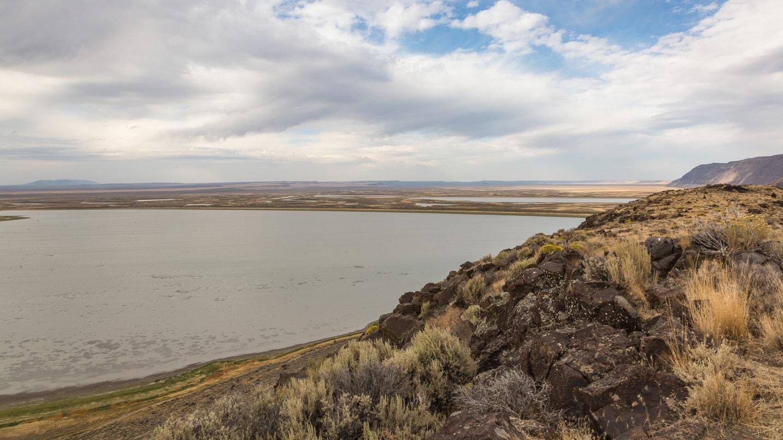 Scenic view of of wetlands