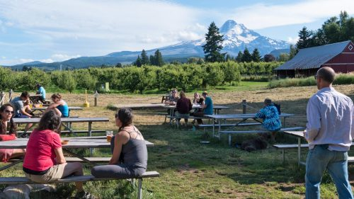 People drinking beer at picnic tables with Mt. Hood in the background