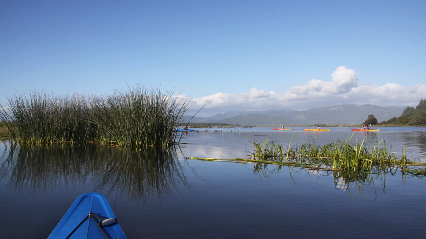 A person took a photo from their kayak as they paddle through a shallow ocean inlet