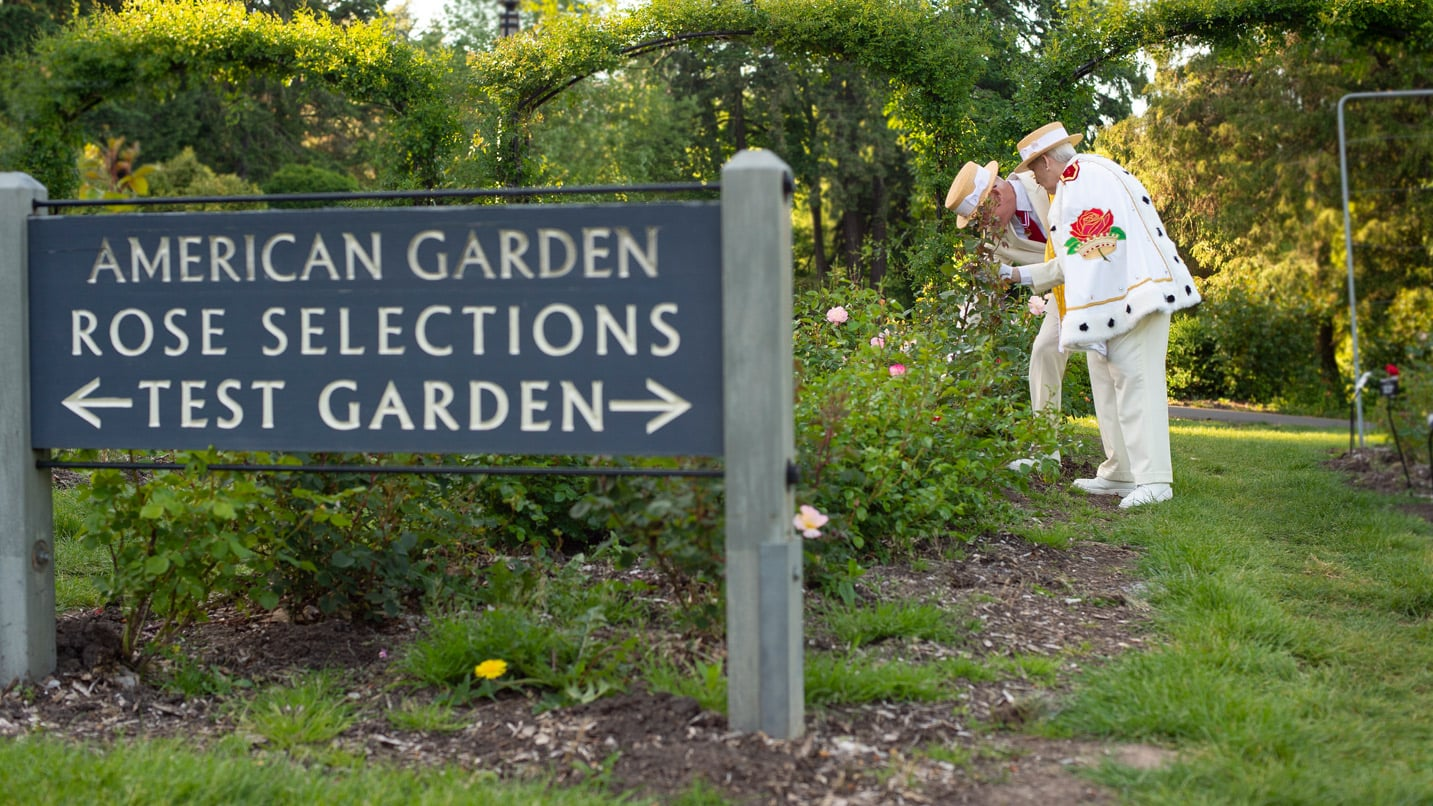 Two people in Rosarian regalia look at roses behind a wayfaring sign