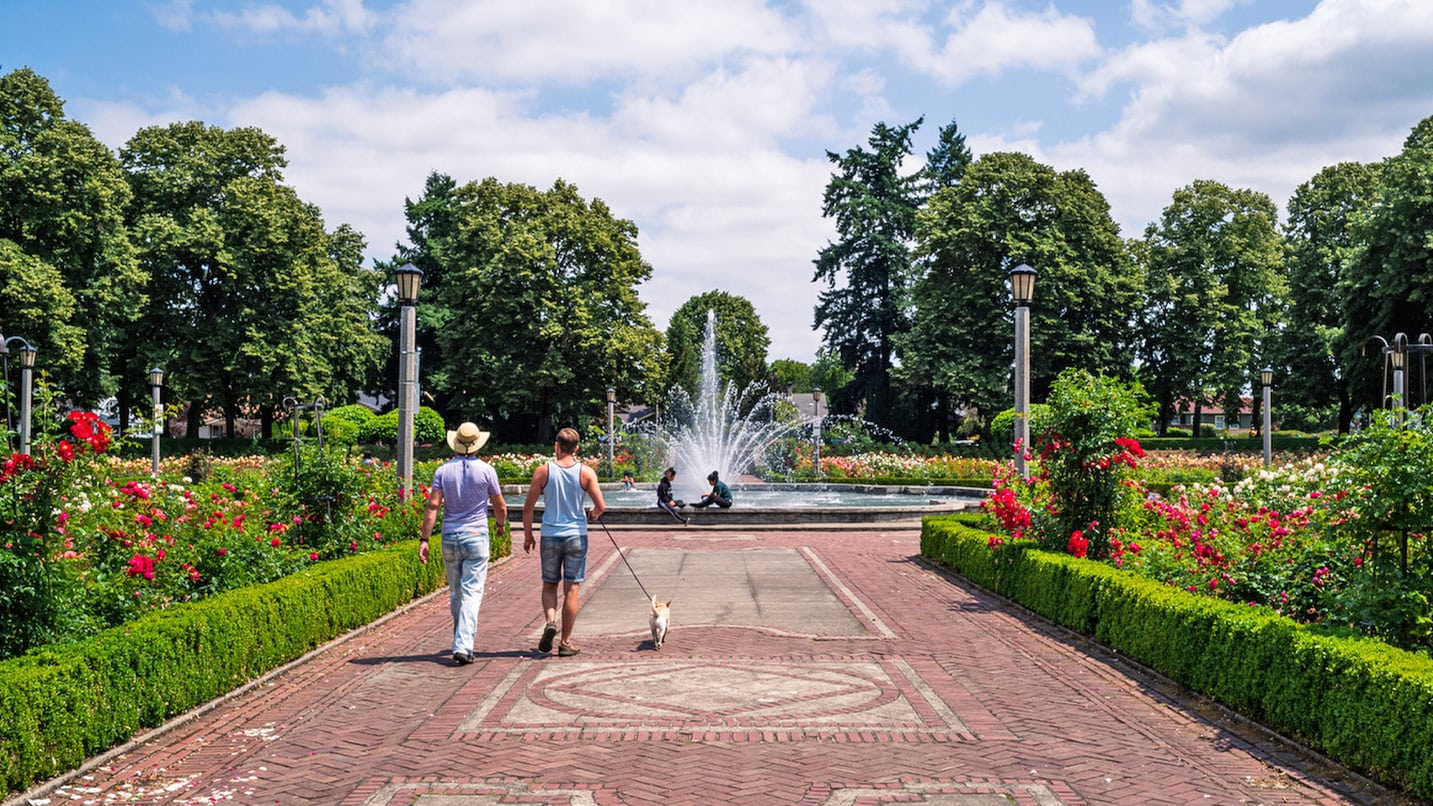 Two males walk their dog down a paved path leading to an ornamental fountain