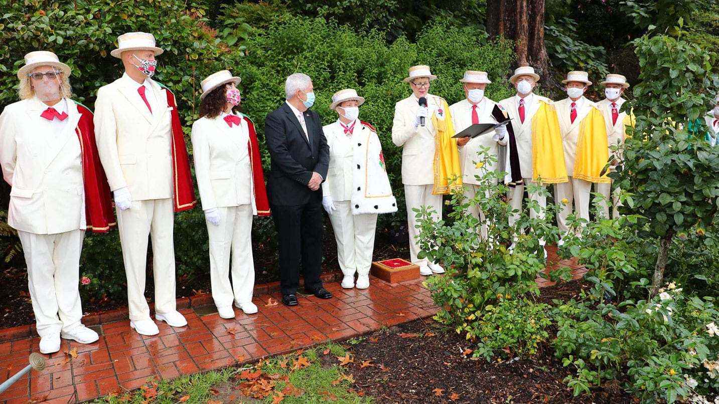 A group of a dozen people in white regalia stand shoulder to shoulder in the rose garden