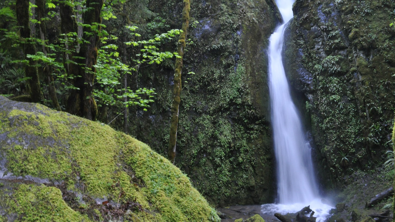 A waterfall flows onto rocks