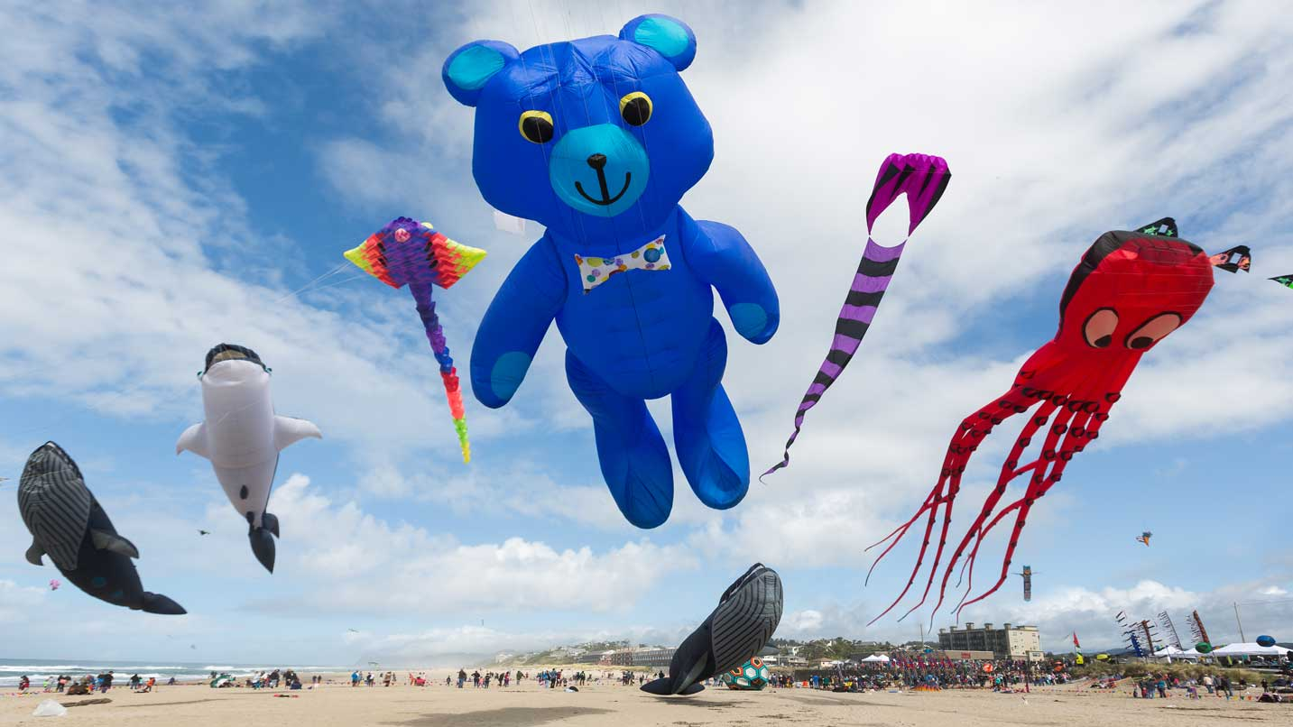 Kites in the shapes of birds and bears float above the beach.