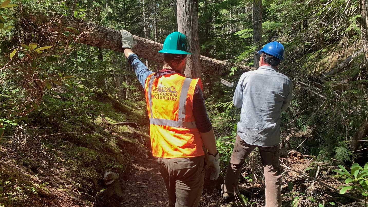 Sawing and removing a tree that had fallen over the trail at Sahalie Falls.