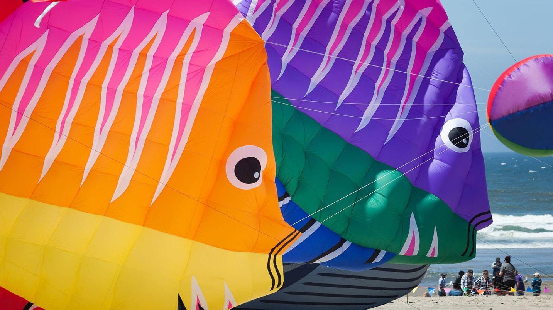 Fish-shaped kites on the beach