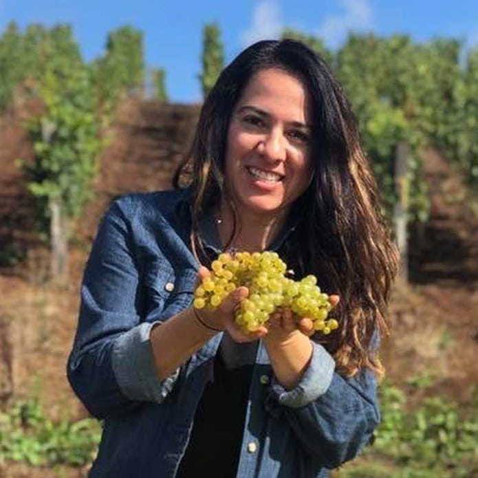 Person holding grapes with vineyard in backgroundt