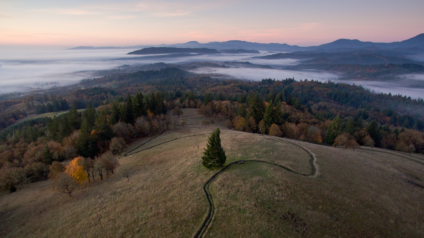 An aerial view of a winding trail on top of a hill above a fog bank