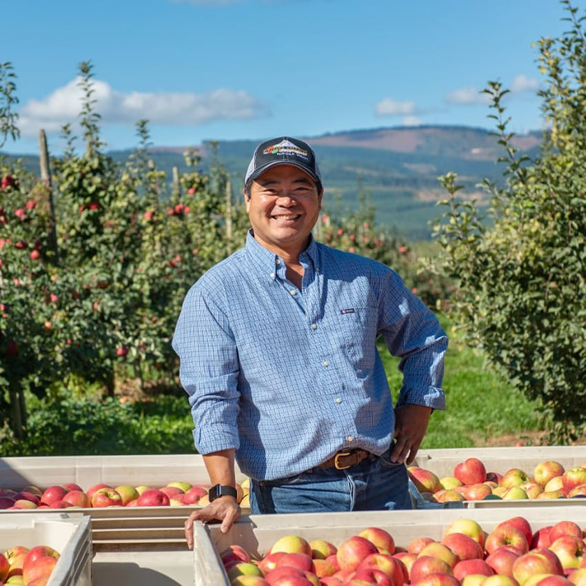 An orchardist smiling next to crates of apples